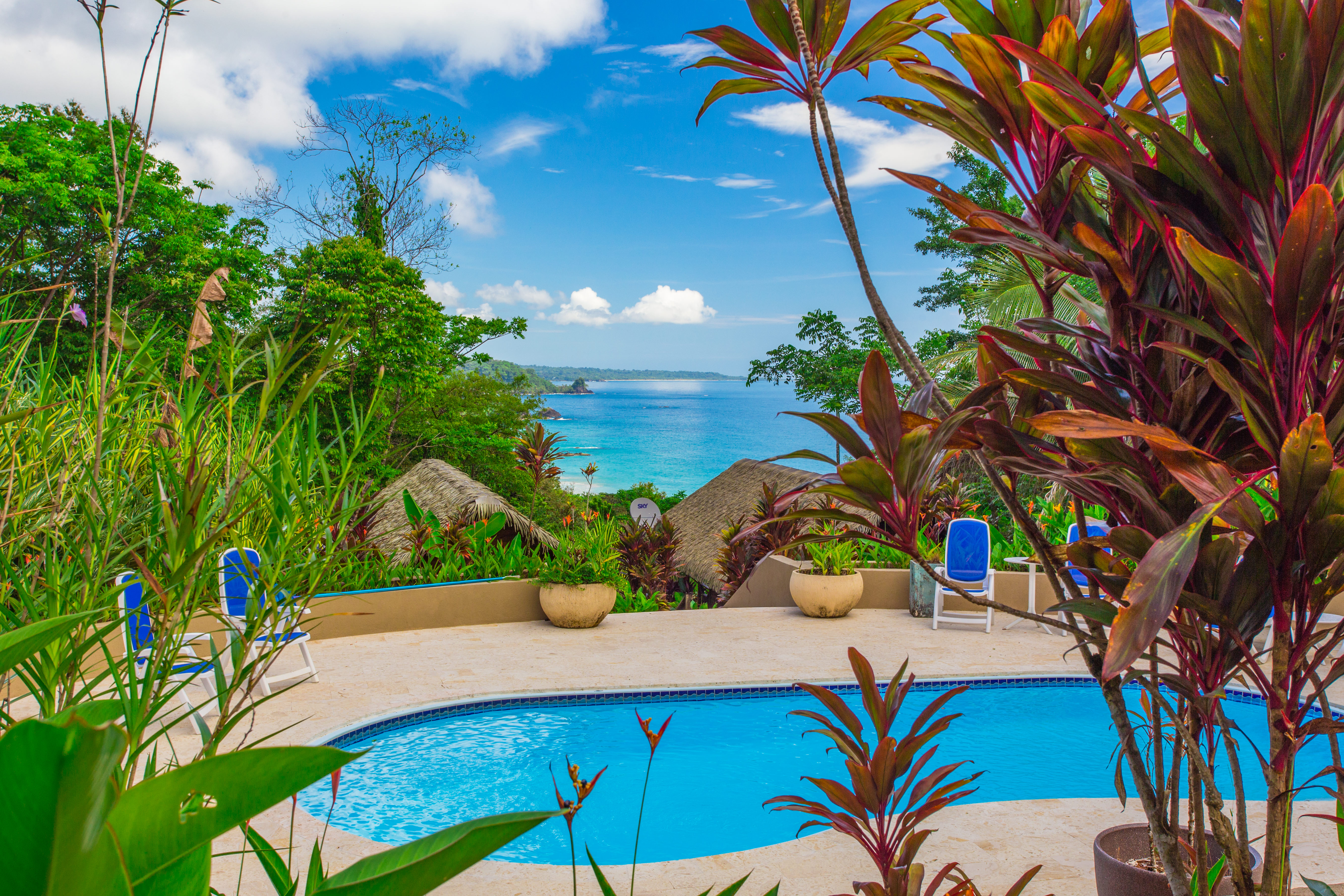 Red Frog Beach Island Resort And Spa In Panama Reservations